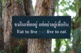 Stop Bugging Me, ChiangMai!